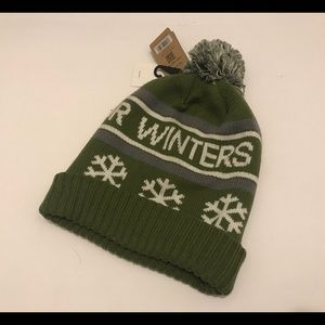 26c40593ad5 Patagonia Accessories - Patagonia Powder Town Beanie Green One Size NWT